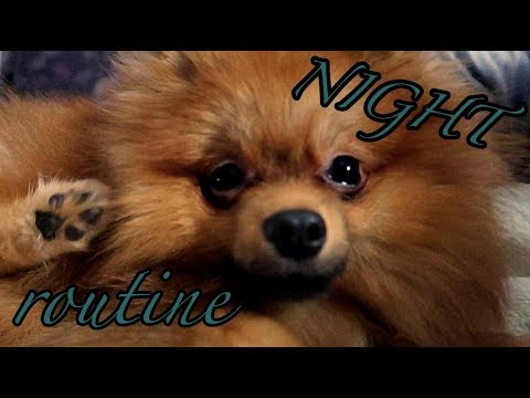BADY'S NIGHT ROUTINE