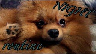 BADY'S NIGHT ROUTINE