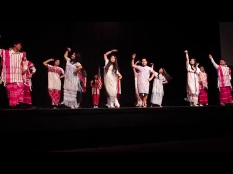 RAHS Multicultural Festival 2016
