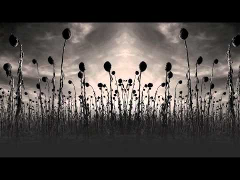 dead can dance anastasis free download