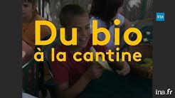 Vauvert, première ville à tenter le bio à l'école en 1993 | Franceinfo INA