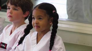 4 Year Old Learning Taekwondo Martial Arts! Vlog #177
