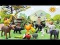 Het verhaal van het vangen van kip voor kinderen   Dierengeluiden boerderij met speelgoed dieren