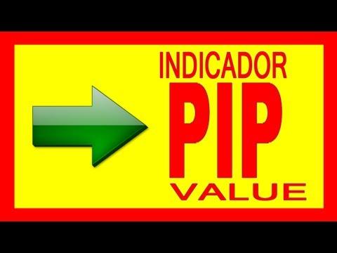 INDICADOR de FOREX para CALCULAR el VALOR del PIP