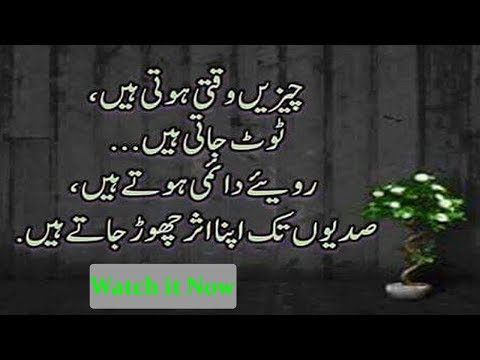 Most Heart Touching Collection of Precious Words|Urdu Life changing Quotes|Adeel Hassan|Quotes|Urdu