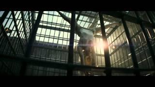 Suicide Squad  - Sebevražedný oddíl  Comic Con - First Look