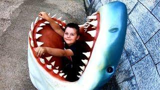Family Fun Adventures in Aquarium | Learn Underwater Sea Animals