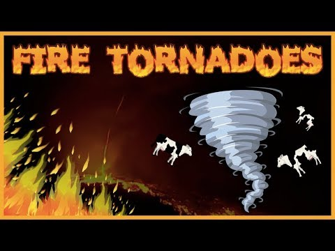 The Destructive Physics Of Fire Tornadoes