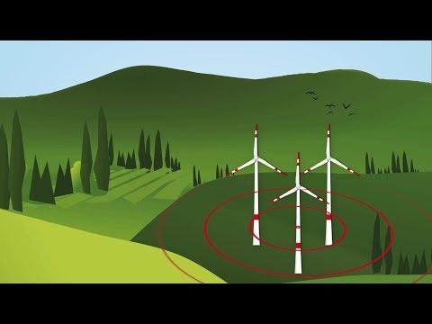 Neues KNE-Video zu Detektionssystemen zur Verminderung von Vogelkollisionen an Windenergieanlagen