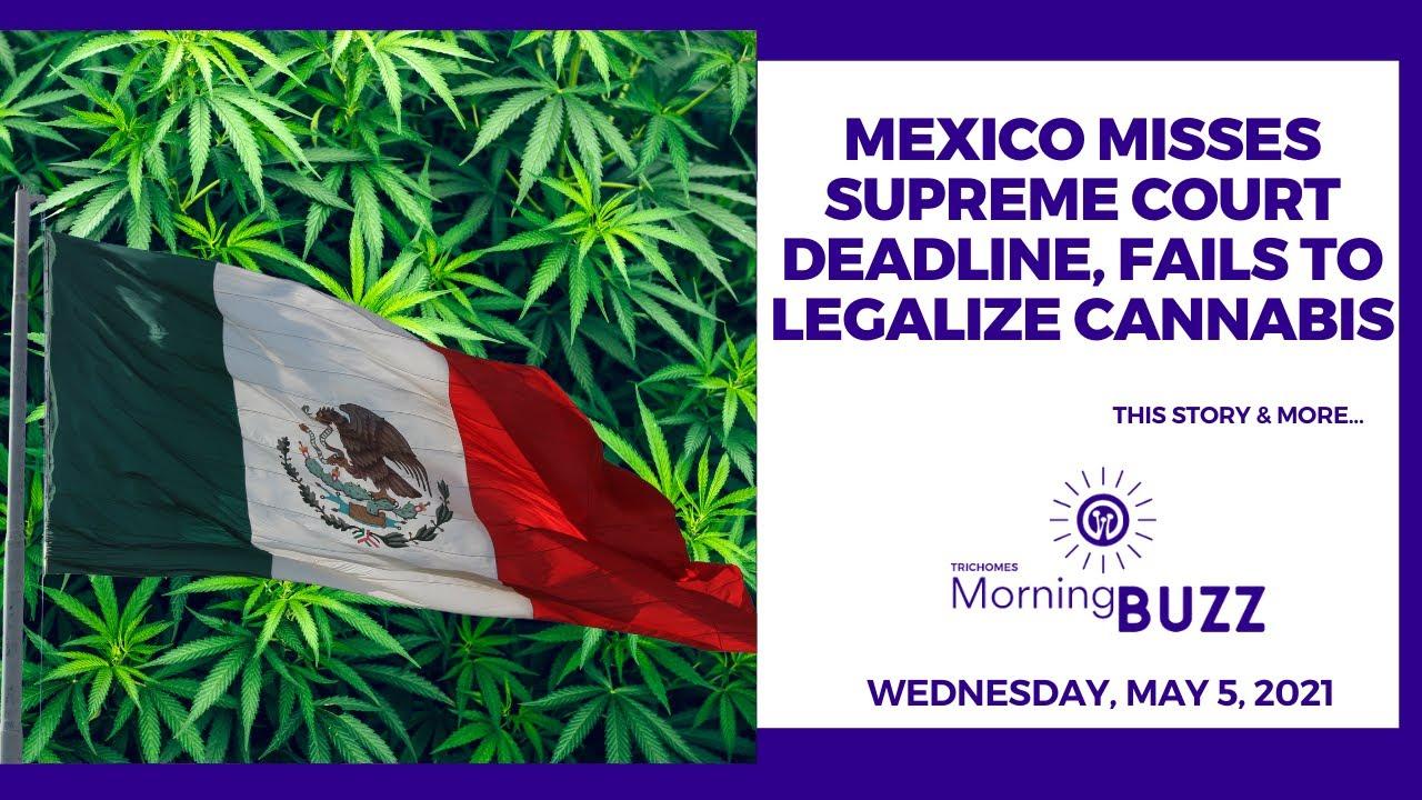 Mexico Misses Supreme Court Deadline, Fails to Legalize Cannabis | TRICHOMES Morning Buzz