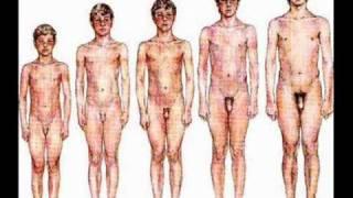 Fase Genital  Freud Puberdade Desenvolvimento Psicossexual Cláudia Bonfim Sexualidade.wmv