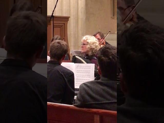 Brigitte Ostertag - Akkordeon