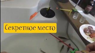 Глухозимье Г Запорожье 12 февраля Секретное место по рыбалке