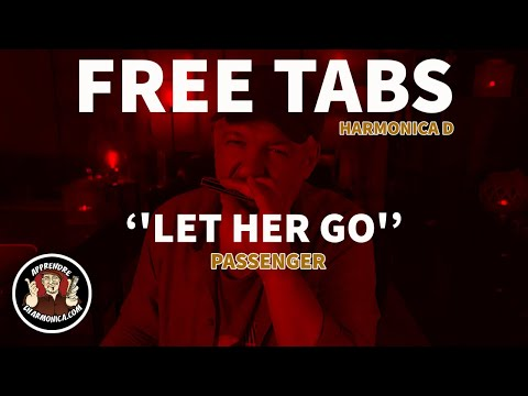 Passenger - Let Her Go - Harmonica D