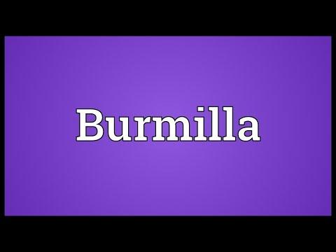 Burmilla Meaning