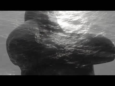 Kimi Kärki feat. Patrick Walker: Beyond Distance (Official Music Video)