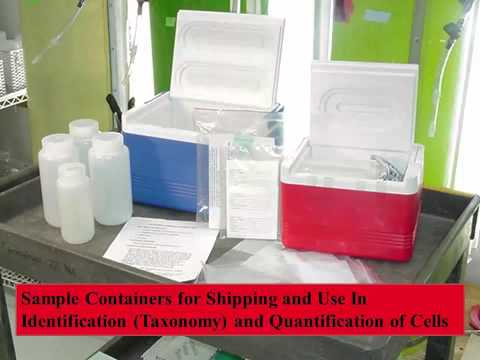 Sampling, Handling, Storage and Shipment of CyanoHABs