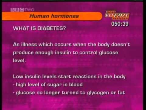 diabetes tipo 1 y tipo 2 bbc bitesize english