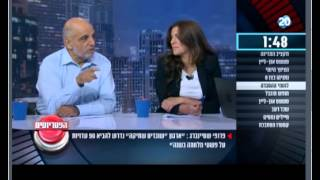 Prof. Gerald Steinberg, Channel 20 Israel TV, Panel Discussion, August 4, 2015