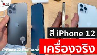 พรีวิวพาชมสี iPhone 12, iPhone 12 Pro ทุกสี จาก Apple Sydney (iPhone 12 All Color)