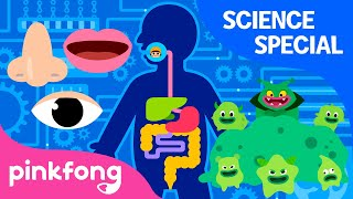 Hospital Play and more | +Compilation | Science Songs Special | Pinkfong Songs for Children