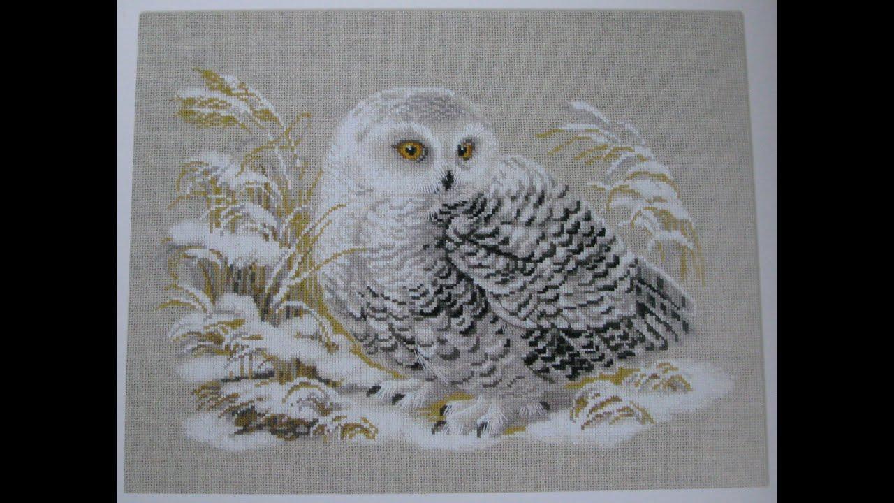 Белая сова риолис схема