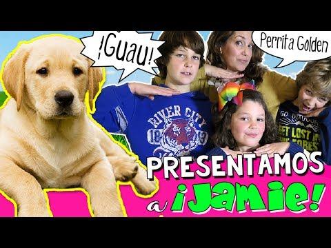 Un Día con JAMIE ¿NUESTRA NUEVA MASCOTA? 🐶 😍 Paseo Baño y Juegos con PERRITA Golden Labrador