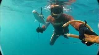 Zıpkın Avı/spearfishing - Kefal( gopro hero2 deneme çekimi) Umut Bayır