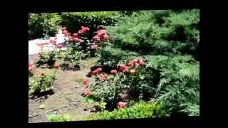 видео Санаторий Черноморец (Крым, Песчаное)
