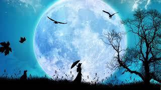 A musa e a lua 0002