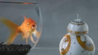 sPHERO ROBOT STAR WARS BB-8 Smart Toys / Smart Toys - Product video Vandenborre.be