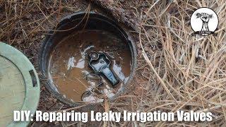 Diy Easy And Cheap Leaky Irrigation Valve Repair