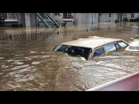 Coyote Creek Flood - San Jose - Feb 21. 2017