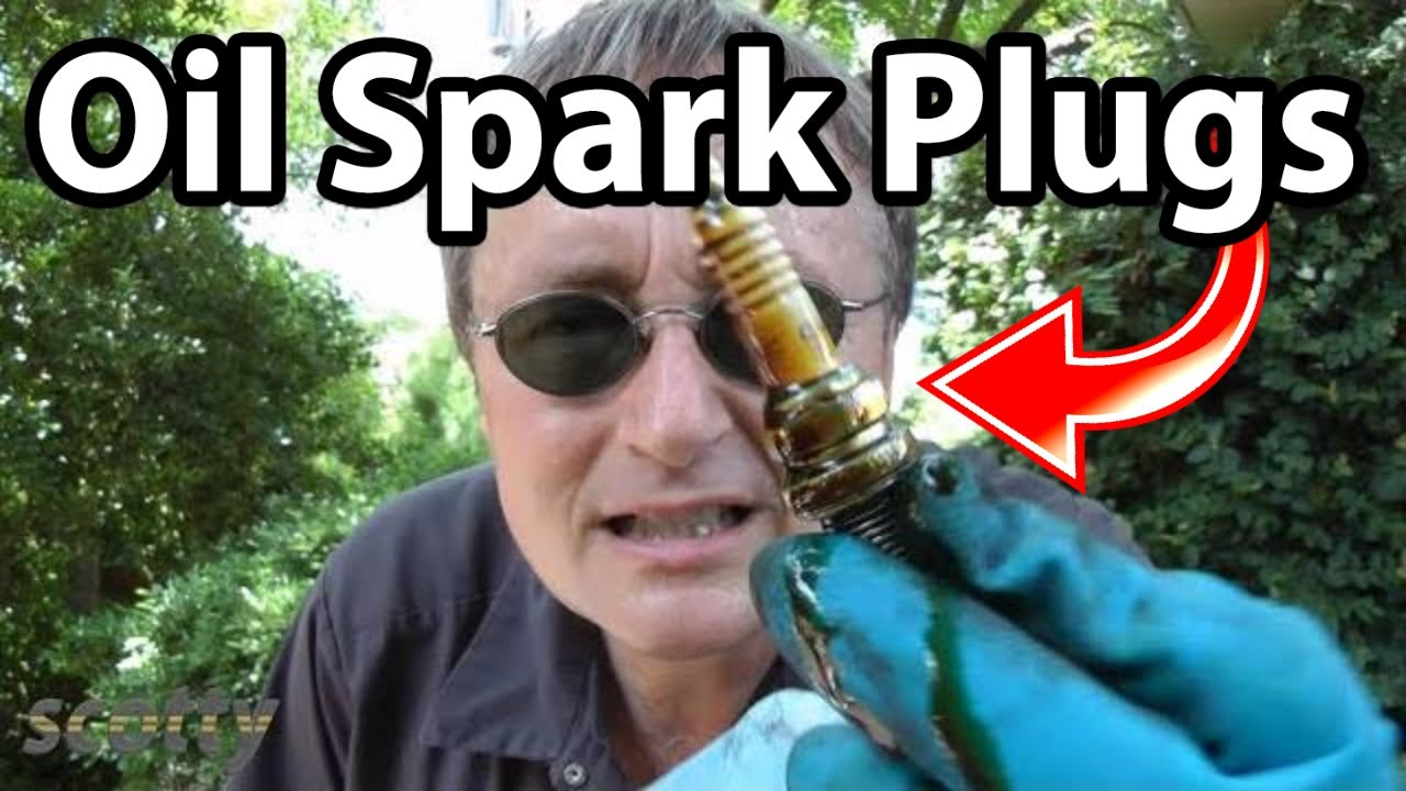 medium resolution of how to fix oil on spark plugs