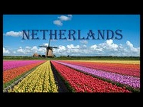 Netherlands|Amsterdam|NH Collection Amsterdam Grand Hotel Krasnapolsky|Dam Square