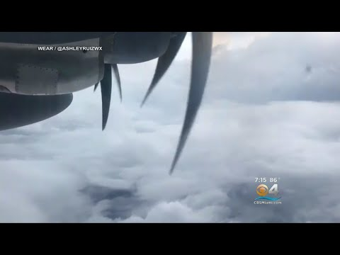 Ocean Expert On Red Tide & Hurricanes