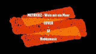 Metrickz - Wein mir ein Meer (Cover von SF)  versuch