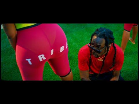 Tigo B - Too Dumb [Official Music Video]