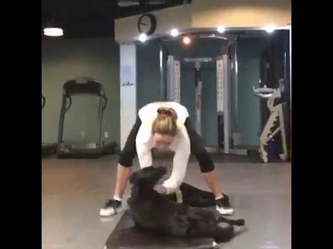 Danielle Panabaker Doing Fight Training for The Flash