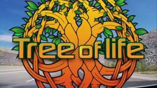 "Tree of Life Festival 2017 ""Enter the Portal"" [NEW LOCATION] (Asprovalta,Greece) ᴴᴰ"