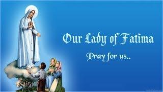 Tâm tình với Đức Mẹ, nài xin Mẹ giúp đỡ dù bất cứ điều gì - Ảnh Phép Lạ Chúa Giêsu