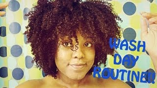 Natural Hair| Wash Day Routine !
