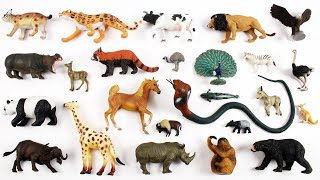 Learn Animals Name For Kids Children Babies Tiddlers | Wild Animals | Farm Animals | Kids Learning