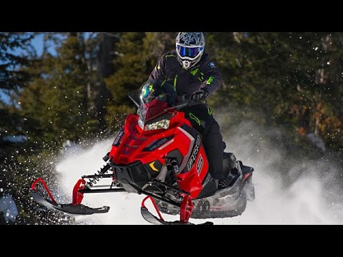 2016 Real World Sled Of The Year