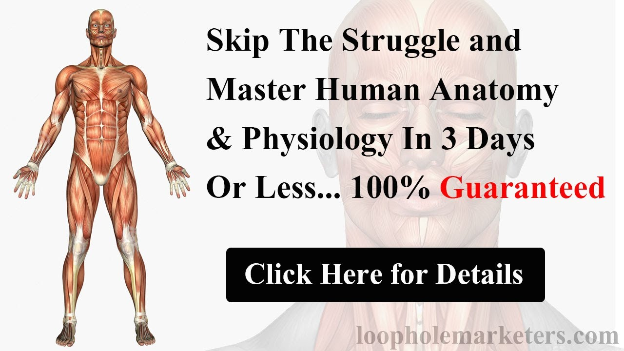 Learn Human Anatomy and Physiology in 3 days Guaranteed! Try Human ...
