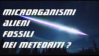 MICRORGANISMI EXTRATERRESTRI NEI METEORITI? -PANSPERMIA- [DUE VIDEO IN UNO!]