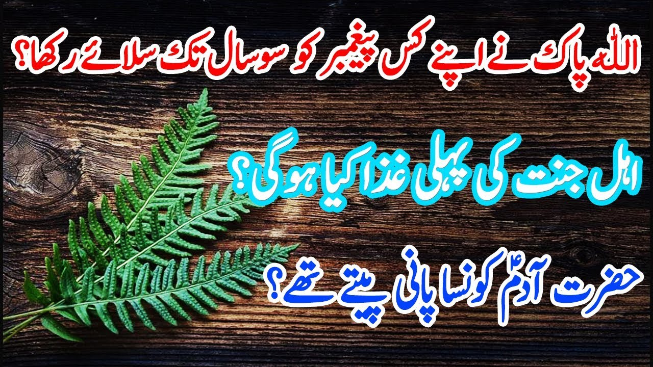 Islamic question and answer in urdu|General knowledge ...
