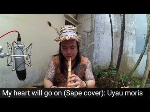 My heart will go on cover with Sape & flute traditional Borneo indonesia style