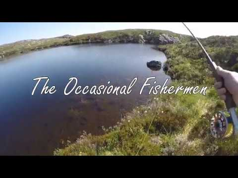 The Occasional Fishermen   Dry Fly Fishing For Specimen Brown Trout In Sutherland Scotland