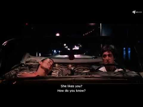 Scarface//The eyes, chico. They never lie.